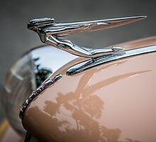 Auburn Logo & Hood Ornament by eegibson