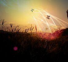 Through the Field of Dreams by missmaestro123