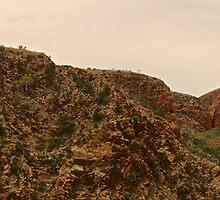 Serpentine Gorge NT Australia   by D-GaP