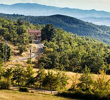 Arezzo, Tuscany (near Castelnuovo) #002 by Samuel Webster