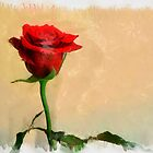 Only a Rose - Red by RicIanH
