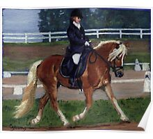 Haflinger Dressage Horse Poster