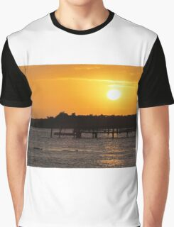 Sunset and Dolphins Graphic T-Shirt