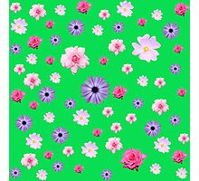 Mixed Roses and Other Flowers Photographic Print