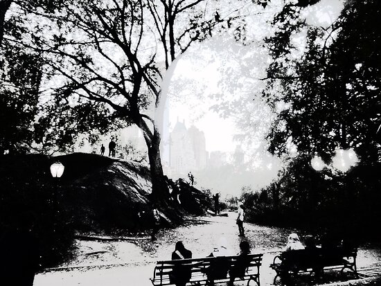 Central Park Structured by Benedikt Amrhein