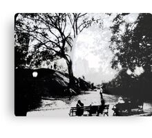 Central Park Structured Metal Print