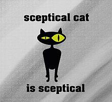 sceptical cat 2 by clasto