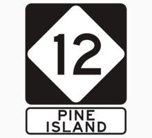 NC 12 - Pine Island by IntWanderer