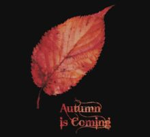 Autumn is Coming Kids Clothes