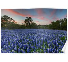 Texas Bluebonnet Images - Evening in the Texas Hill Country 1 Poster