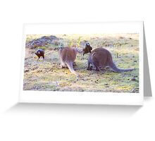 Look! Go quietly they'll never notice us . Greeting Card