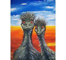 Cheeky Emus Photographic Print