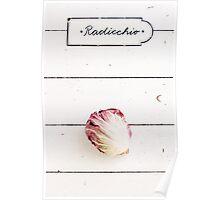 Radicchio (Chicory) Poster