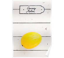 Canary Melon Poster