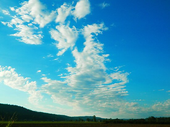 Summer Clouds by kchase