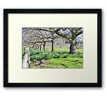 Spring at Ridgley Framed Print