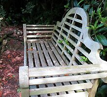 Thomas Hardy's Seat by BlueMoonRose