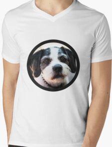 Cooper the Dog Mens V-Neck T-Shirt