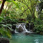 Tropical Waterfall by CrazyAmazing