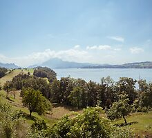Central Switzerland - Lake Lucerne by visualspectrum