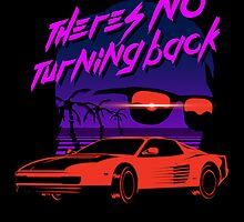 There's no turning back by James Camilleri