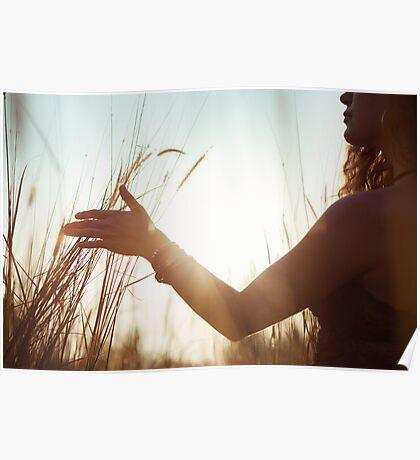 Female Hand Stroking High Grass Poster