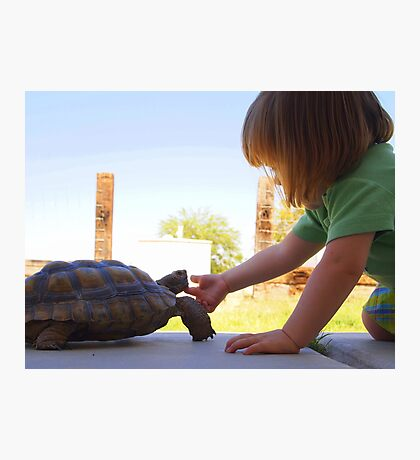 Turtle Friend Photographic Print