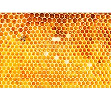Honeycomb Photographic Print