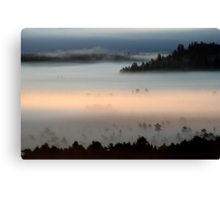 3.9.2013: Morning in Torronsuo National Park I Canvas Print