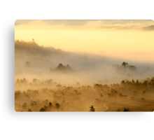 3.9.2013: Morning in Torronsuo National Park III Canvas Print