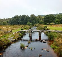 Postbridge, Dartmoor by Ludwig Wagner