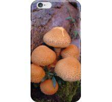 Autumn Mushrooms iPhone Case/Skin