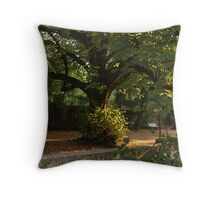 Botanic park in Coimbra Throw Pillow