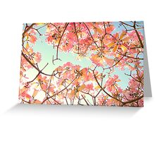 Spring Splendor Greeting Card