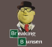 Breaking Bunsen by Buleste