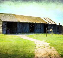 Prairie Barn by designingjudy