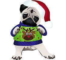 Super Cute Pug in an Ugly Sweater Photographic Print