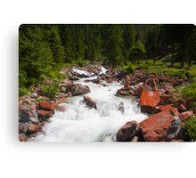 Alpine Brook Canvas Print