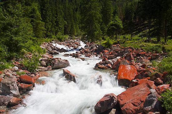 Alpine Brook by Walter Quirtmair