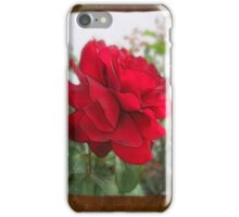 Red Rose Edges Blank P3F0 iPhone Case/Skin