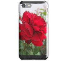 Red Rose Edges Blank P4F0 iPhone Case/Skin