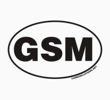 Great Smoky Mountains GSM Kids Tee
