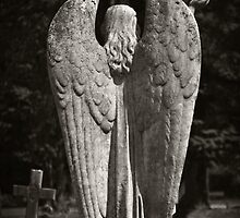 On angels wings a heavenly flight, the journey home towards the light by Nicola Smith