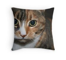 pbbyc - Belle - Boss Cat Throw Pillow