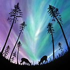 Deer grazing over Northern Lights by Linda Woodward