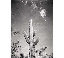 Cactus X2 Holga Double Exposure Photo Photographic Print
