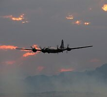 B-29 Bomber Plane flying at Sunset by Amy McDaniel