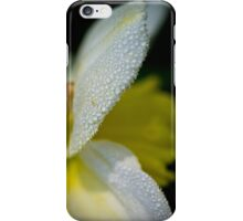 Dewdrops on daffodil in the dark iPhone Case/Skin