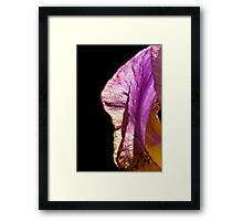 Bearded Iris on black Framed Print