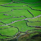 Mosaic, Wasdale Head, Lake District National Park by strangelight